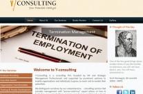 Y Consulting