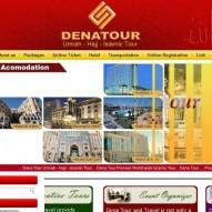Dena Tour and Travel
